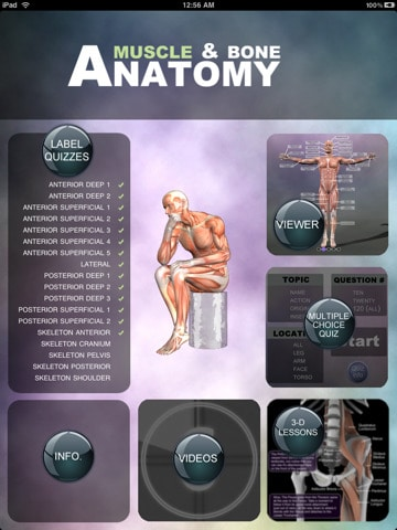 muscle and bone anatomy iPad app review