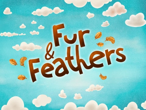 Fur-&-Feathers