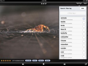 Photo Gallary App for iPad